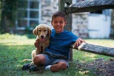 1. Among children, the risk of dog bite injuries is highest for ages 5-9 years. Recent studies show, however, that the rate of dog bite injuries among children seems to be decreasing.
