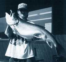 Trout, Lake (Salvelinus namaycush): 27 lb. 13 oz. -- caught by Tom Illar, Jr. of Apollo in 1996 at Lake Erie.