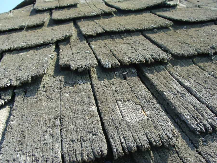 Here's a look at the shingle roof on the smokehouse.