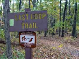 The East Loop Trail is 1.9 miles of moderate hiking that is marked with lime green blazes. This trail runs toward the eastern end of the conservation area and follows the power line for about 0.3 mile.