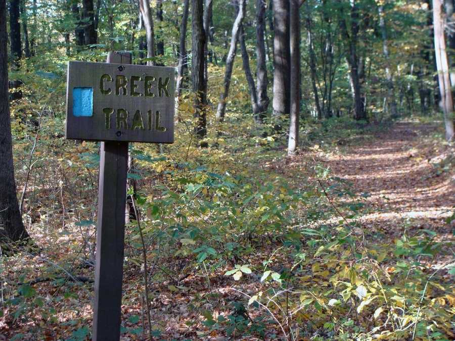 The Creek Trail is 0.9-mile of moderate hiking that is marked with medium blue blazes.