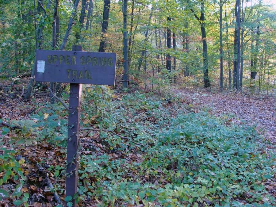 The Upper Spring Trail is 2 miles of moderate hiking that is marked with beige blazes. This trail provides the hiker with a nice cross-sectional view of the conservation area.