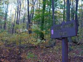 The Lower Spring Trail is 1.1 miles of easy hiking that is marked with lavender blazes.