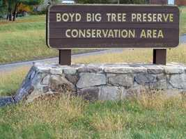 The 1,025-acre Boyd Big Tree Preserve Conservation Area is one of the newest Pennsylvania state parks.