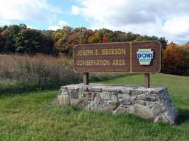 The 370-acre Joseph E. Ibberson Conservation Area, which straddles Peters Mountain in Dauphin County, is dominated by large hardwood trees.