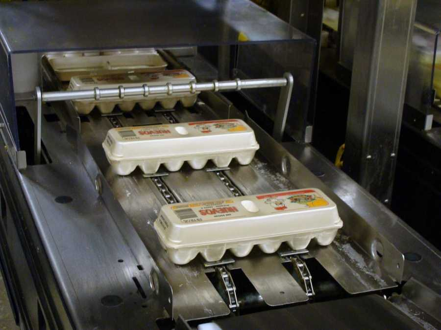 Consumers can go on Sauder's website and type in the code to see which farm their eggs were laid.