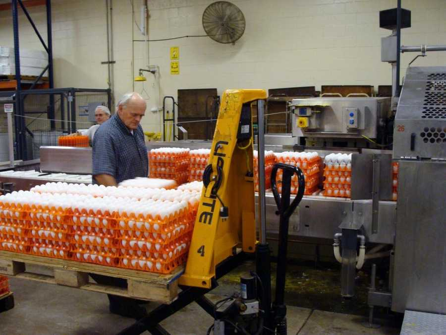 They are taken from the room and loaded into a machine where they are sanitized and packed into cartons.