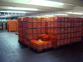 After the eggs arrive on trucks, they are stored in a large refrigerated room.