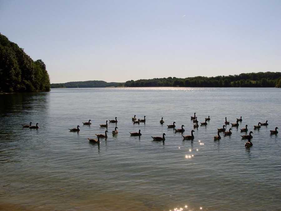 Lake Marburg is named for the small community of Marburg that is covered by the lake.