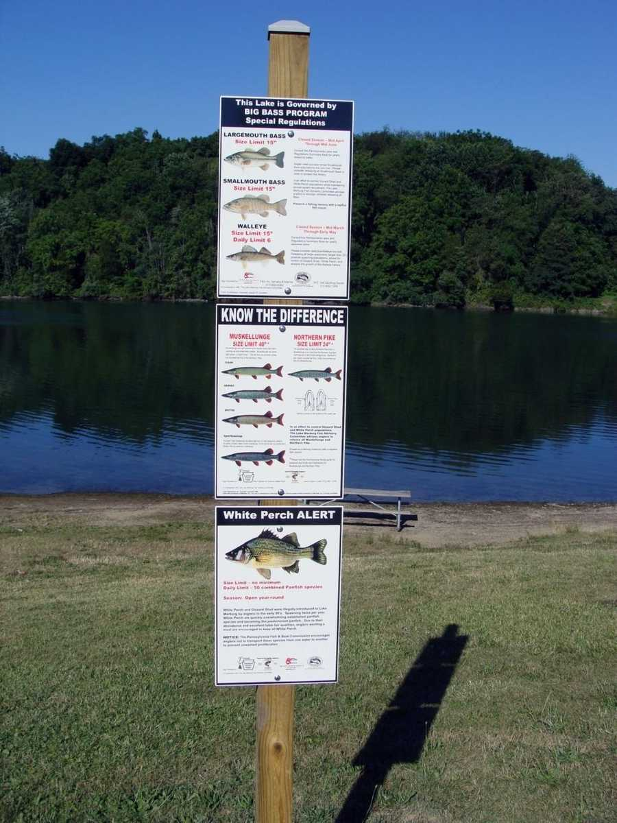 The lake is part of the Big Bass Program. Large and smallmouth bass must be a minimum of 15 inches long to be harvested and the daily limit is four fish of either species combined.