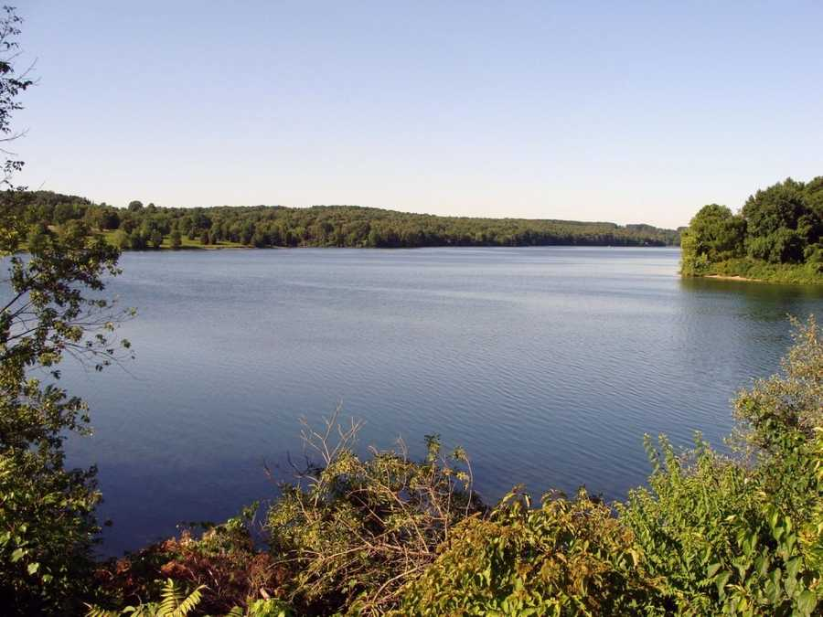 The Glatfelter Paper Company and Spring Grove are permitted to draw water from the lake.
