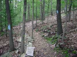 The Pole Steeple Trail is a three quarters of a mile hike in neighboring Michaux State Forest. The blue-blazed trail contains some steep climbs.
