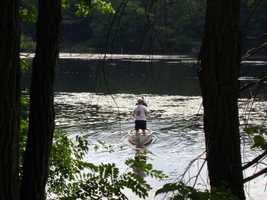 The common fish in the lakes are pickerel, perch and stocked trout.
