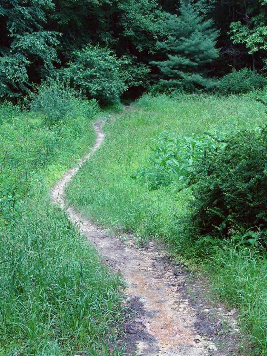 The trail elevation in Pennsylvania ranges from 320 to 2,080 feet.