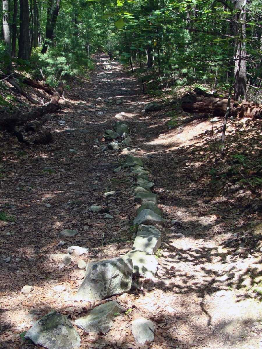 In Pennsylvania, the trail follows ridges of mountains east of the Alleghenies to the Susquehanna River in a long section of trail notorious for its foot-bruising, boot-destroying rocks.