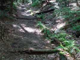 For an interactive map of the trail (maintained by the Appalachian Trail Conservancy), click here.