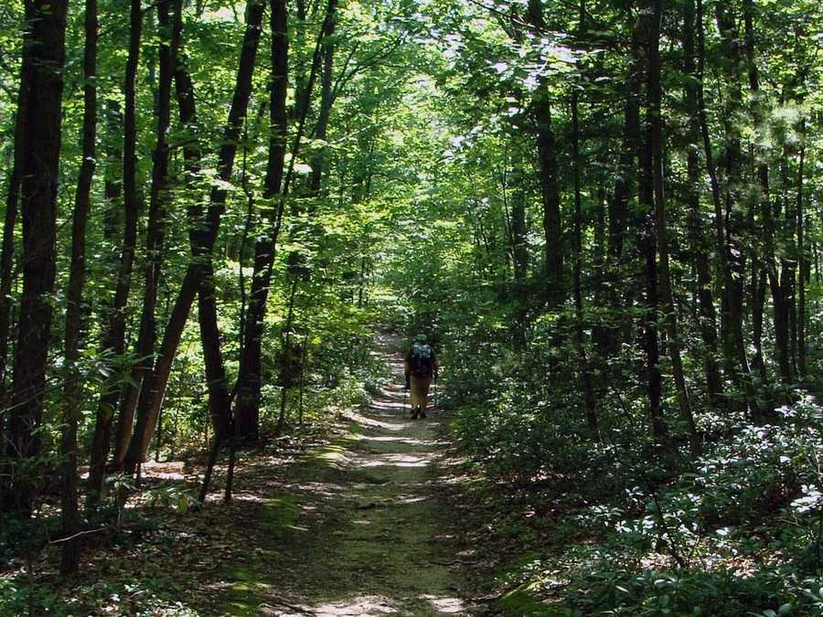 A hike of the trail's entire length in one season is called thru-hiking.