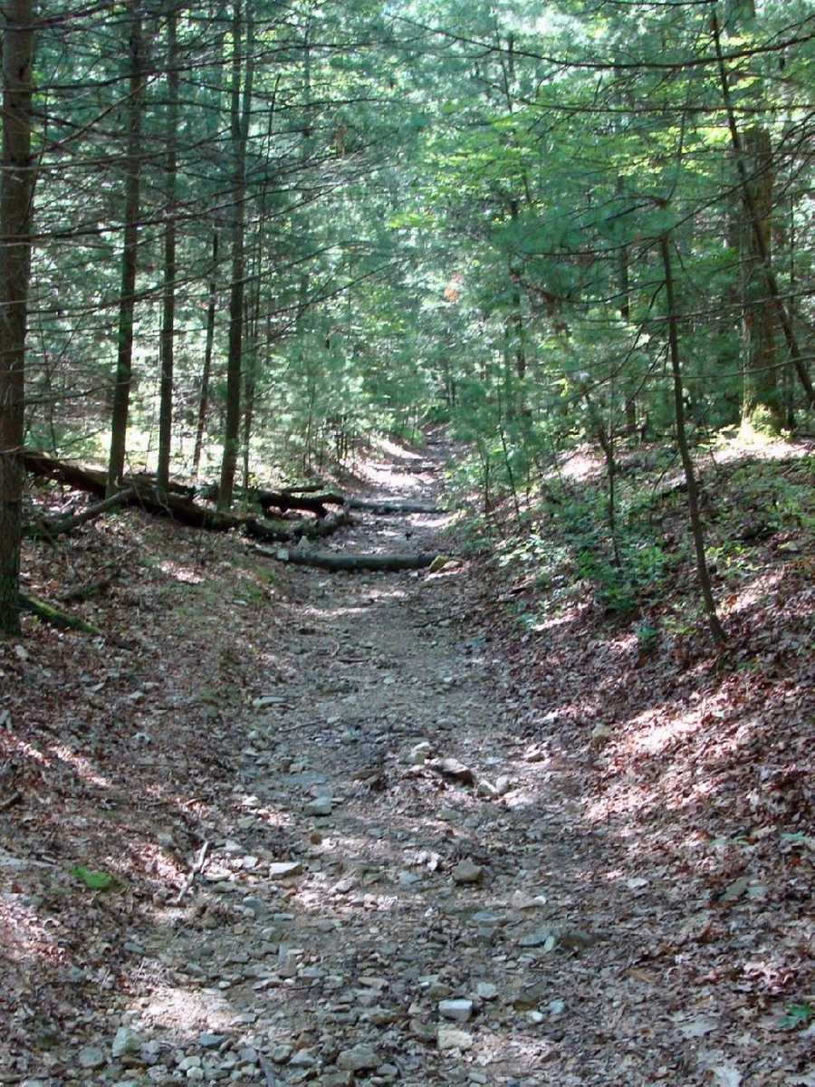 It takes approximately 5 million footsteps to walk the entire length of the trail.