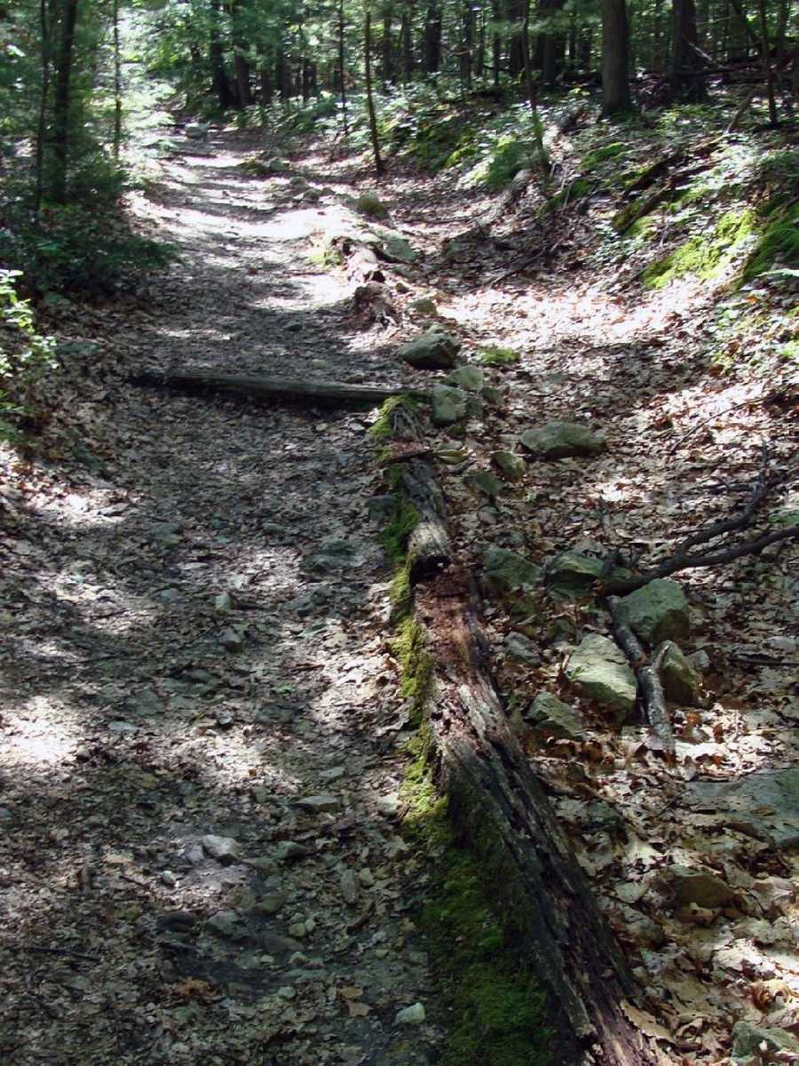 For more information about the trail in Pennsylvania, click here.
