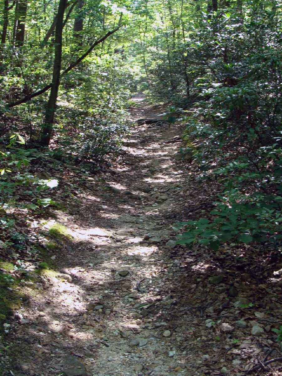 In Pennsylvania, 229 miles of the trail await hikers.