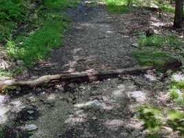 The approach to walking the length of the trail in segments is called section-hiking.