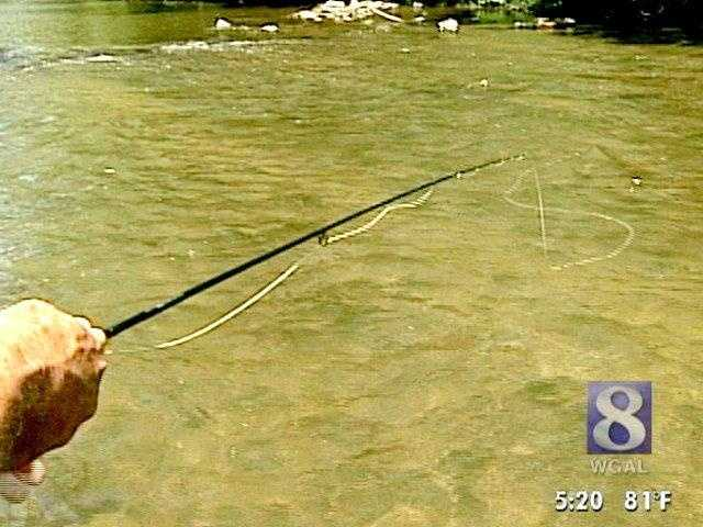 Following is the up-to-date listing of state records of Pennsylvania's most popular sport fish.