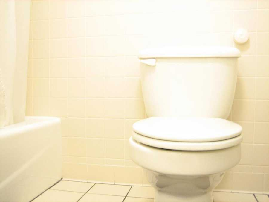 Rhypophobia: People who are afraid of defecation have rhypophobia, and are at risk for other health problems.