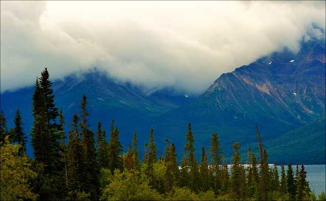 Alaska. Ballot Measure 8 passed in 1998. The law restricts possession to 1 ounce of usable product and 6 plants total.