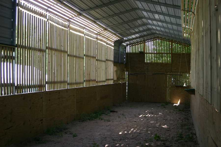The flight cage is designed to accommodate the needs of large birds to give them a space to exercise and prepare for their return to the wild.
