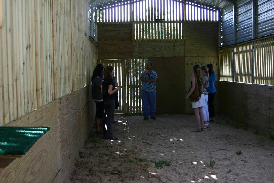 Donors and staff were among the first people to see the new flight cage in action.