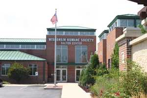 For more information abut Wisconsin Humane Society click here to visit their website.