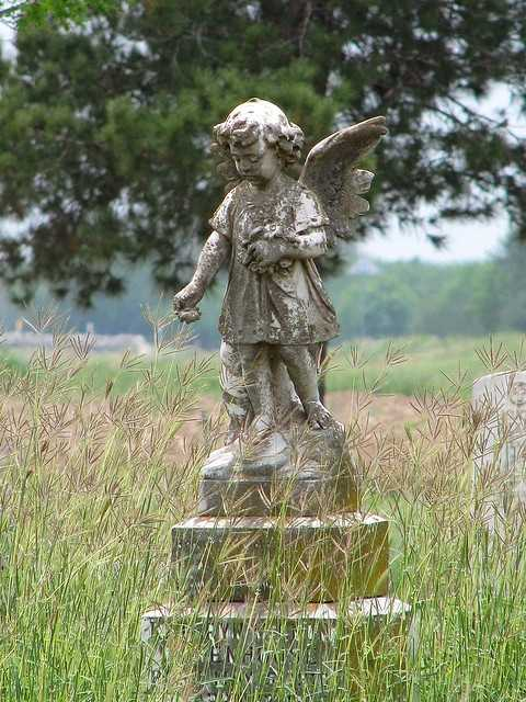 Looking for heaven on earth? Try Angel City, Texas.