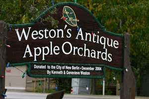 Weston's Antique Apple Orchard in New Berlin has seen a 40% decrease in crop this year.