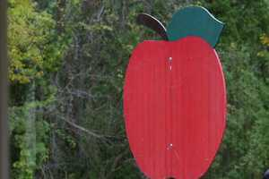 Click here for more information about the Apple Harvest Festival at Retzer Nature Center.Click here for more information about Weston's Antique Apple Orchard.