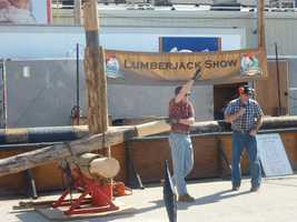 The Lumberjack Show is held several times daily.