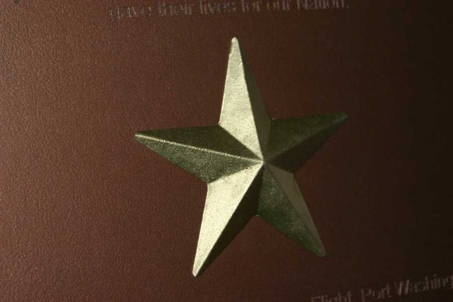 The gold star is a symbol of those killed or missing during WWII. Nearly 8,000 of the 400,000+ were from Wisconsin.