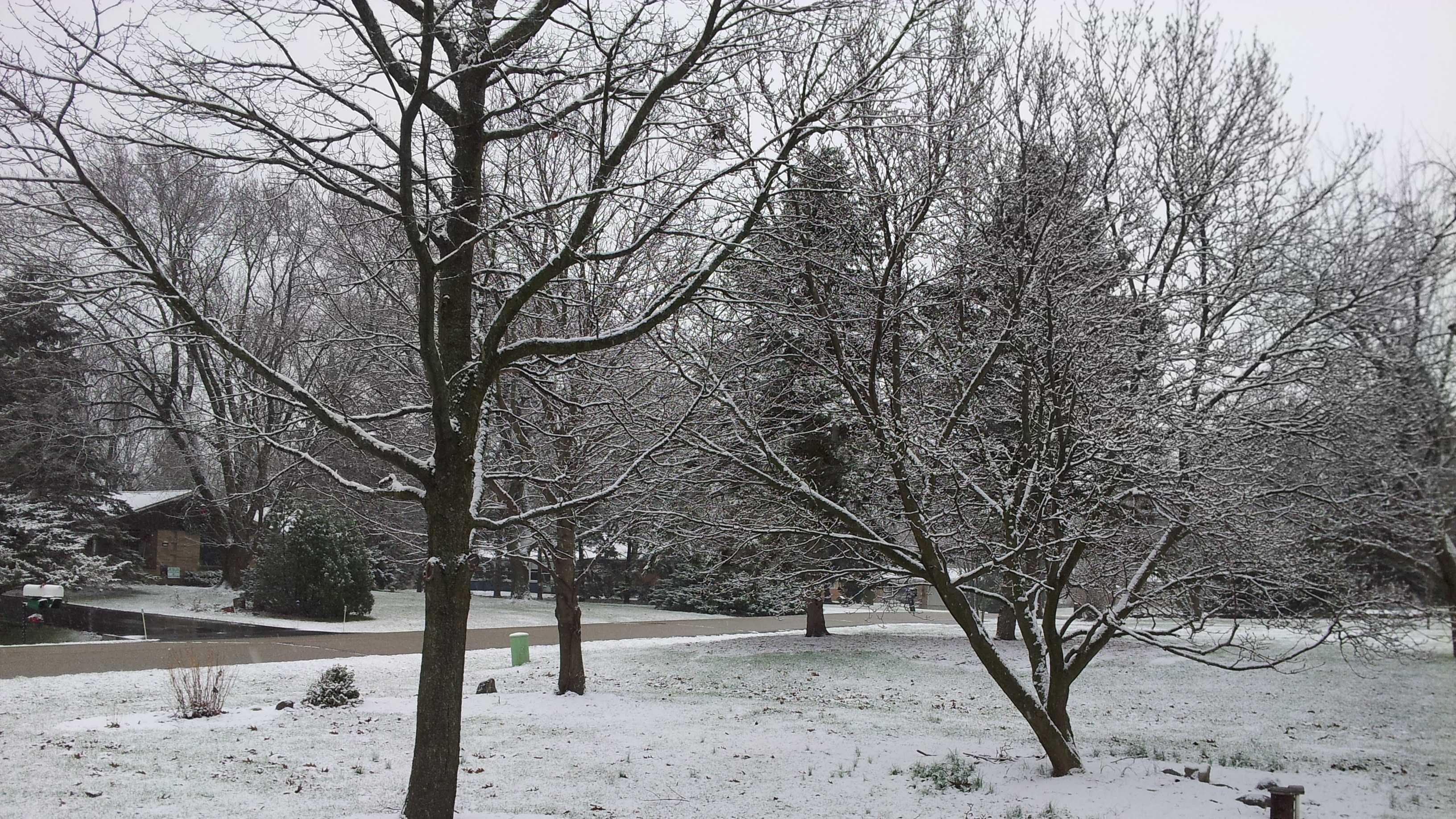 muskego snow 3.jpg
