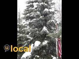 Menomonee Falls - 7 inches