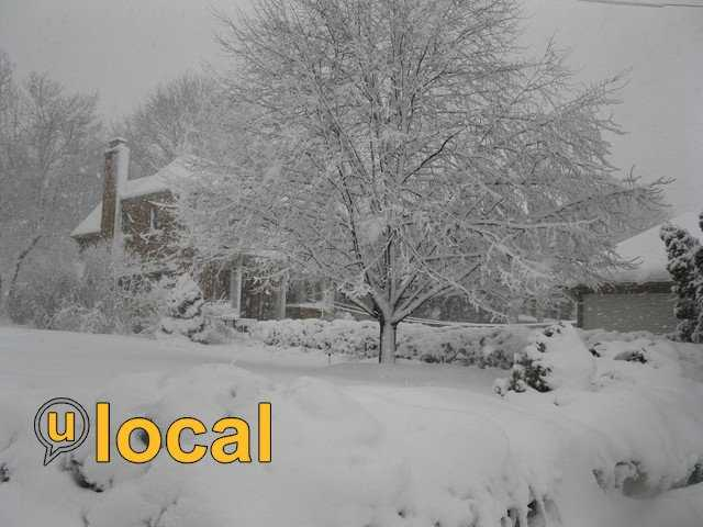 Oakfield - 14 inches