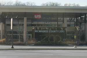 For more information about the Milwaukee County Zoo including hours and admission check out their website http://milwaukeezoo.org.