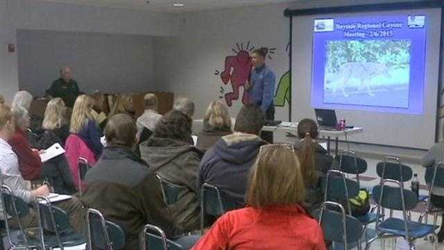 The Village of Bayside held a meeting about recent coyote sightings in the area.
