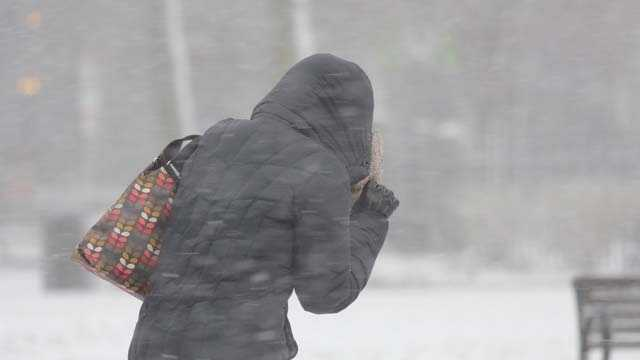 Person in jacket in Boston during blizzard