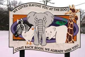 Milwaukee County Zoo, behind the scenes, warthog, eland, animals, giraffe, gorilla, hay, stallsFor more information about the Milwaukee County Zoo click here to visit their website.