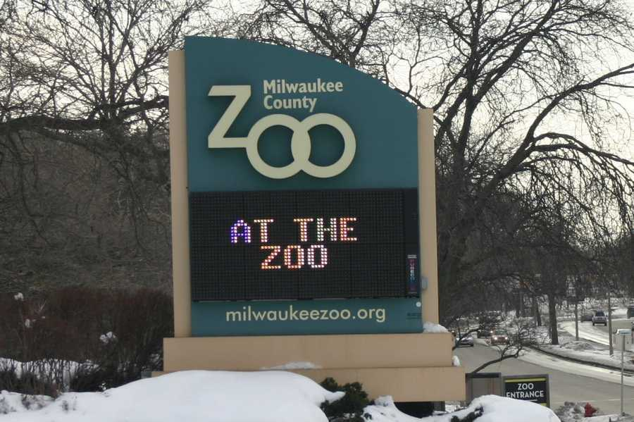 ...at the zoo...