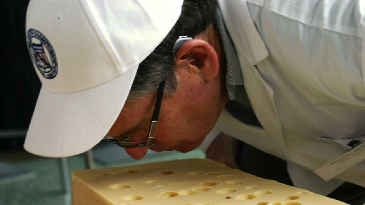 Smelling the Swiss.