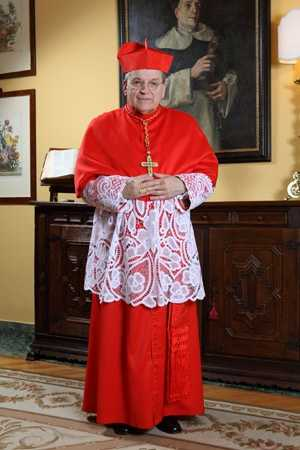 On Nov. 20, 2010, Pope Benedict XVI elevated Burke to the cardinalate as a Cardinal-Deacon.  He became the fifth Archbishop of St. Louis to become a member of the College of Cardinals.