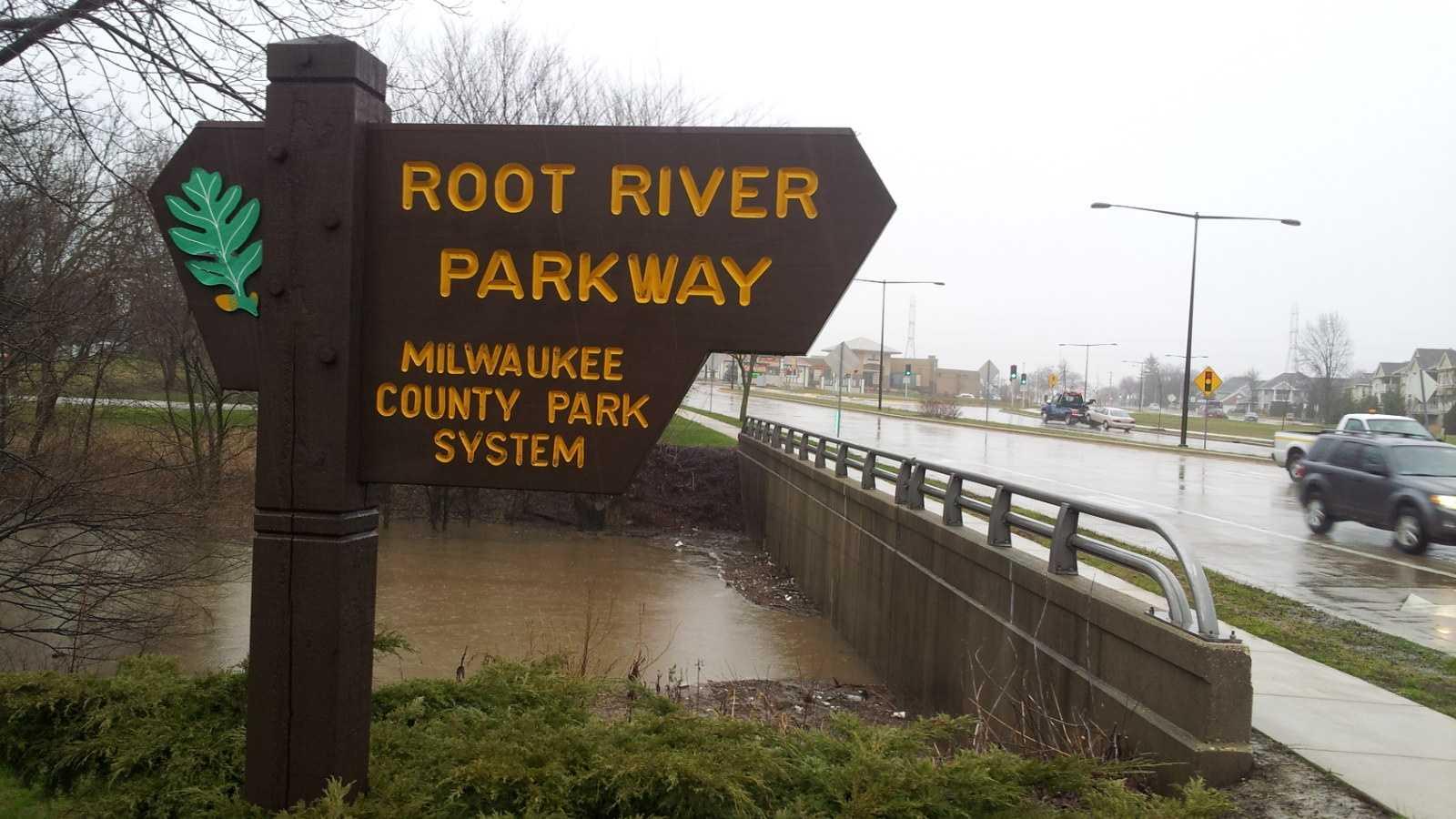 rootRiver2.jpg