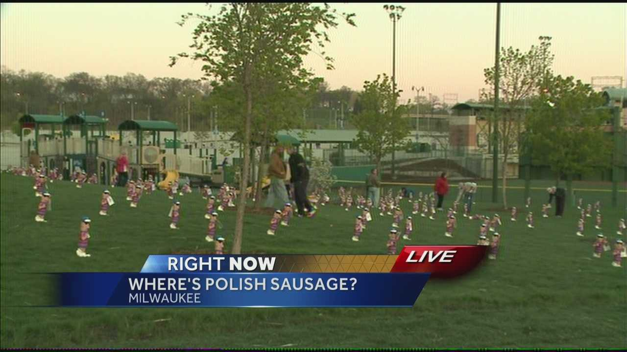 Monday morning, the Milwaukee Brewers scattered 2,000 Polish racing sausage lawn ornaments for fans to grab, with free Brewers tickets.  WISN 12 News' Hillary Mintz reports.