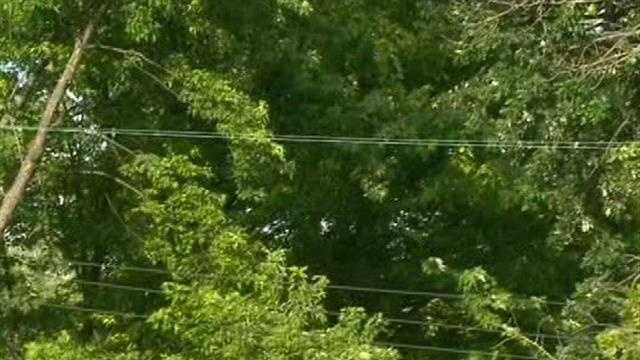 A private contractor is in critical condition after being shocked by power lines Saturday.