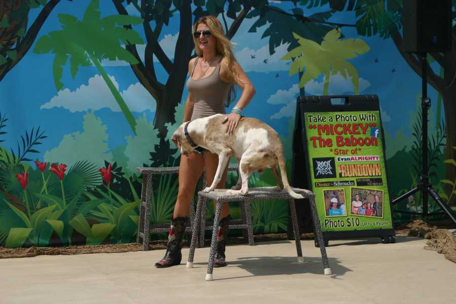Martina, Kevin's wife, also helps with the animals and show.